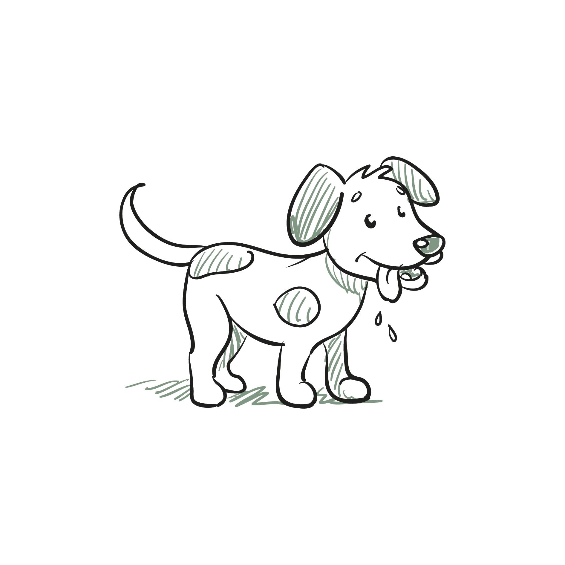 Hundeclique_Basics-für-Welpen-und-Junghunde