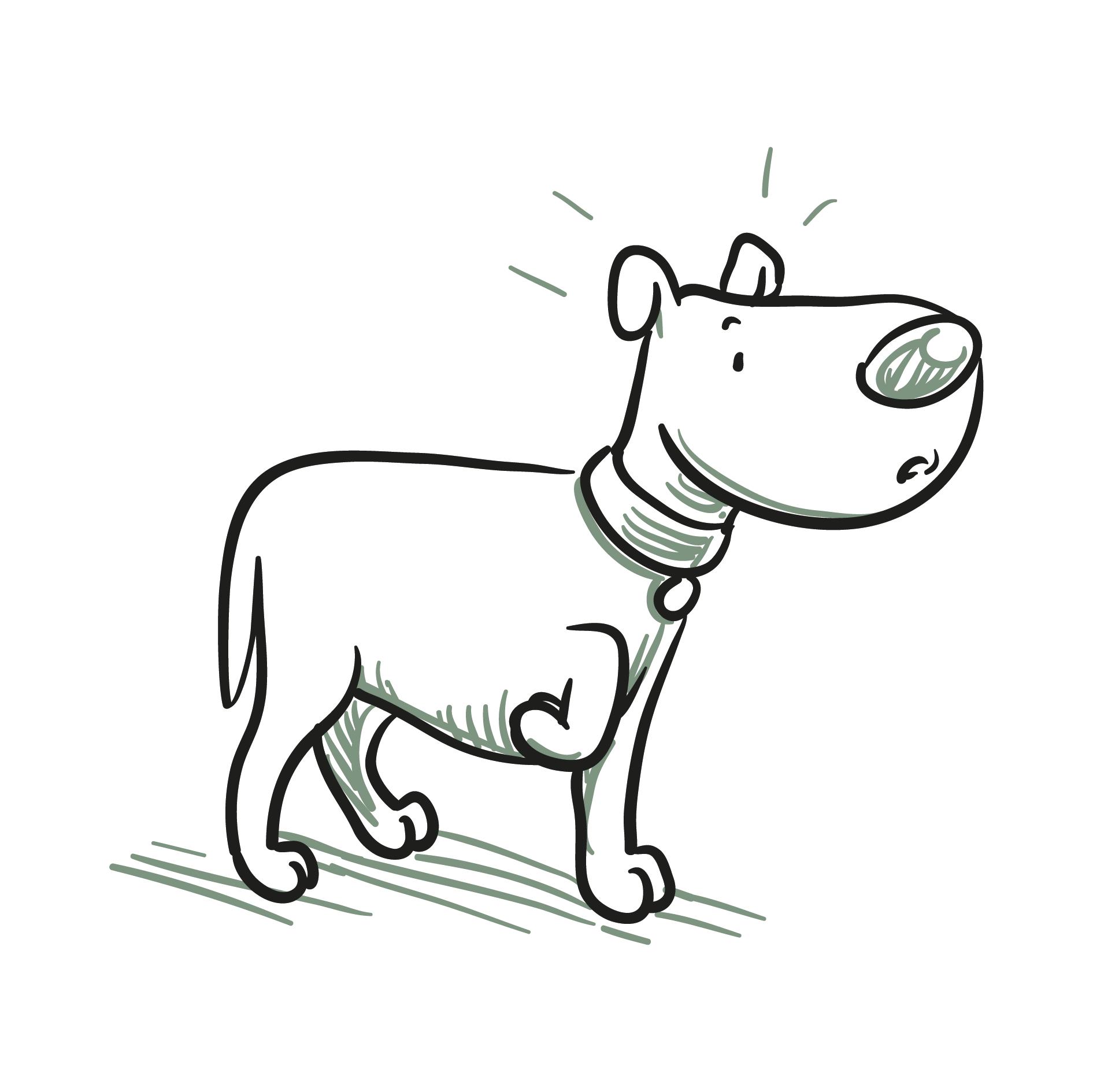 Hundeclique_ängstlich-oder-unsicher